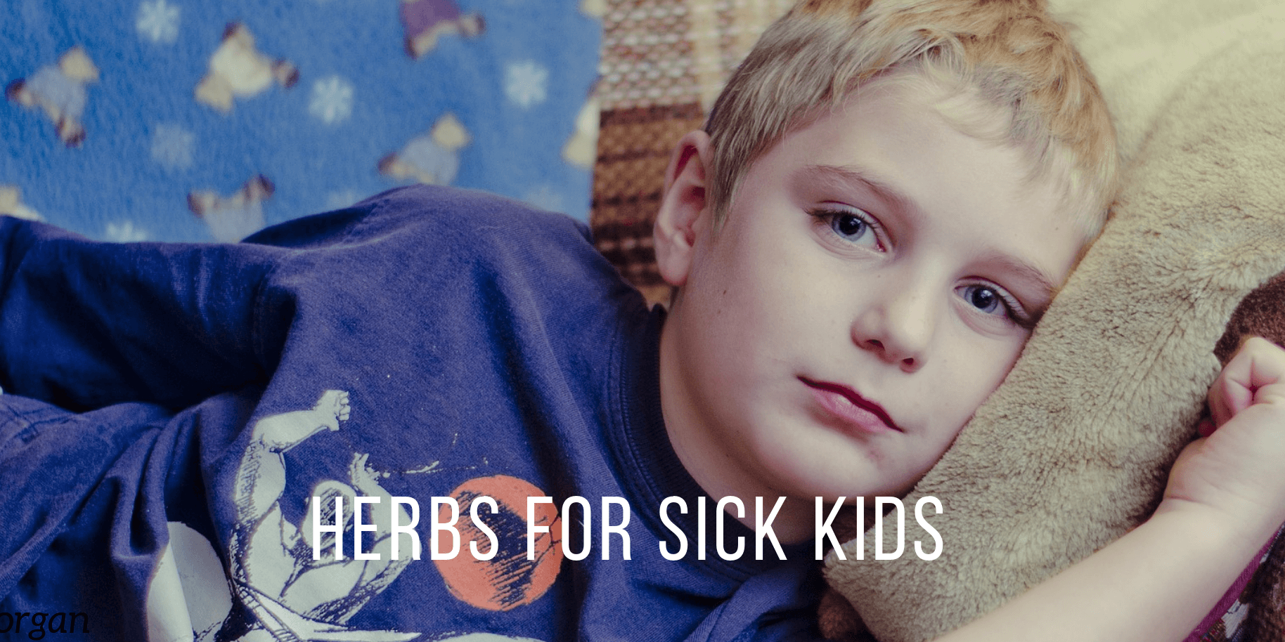 CK Health and Wellbeing - Boost Immune System for Kids Colds and Flu - Herbs for Sick Kids Boy